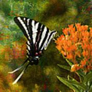 Hungry Little Butterfly Print by J Larry Walker