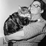I Love My Big Cat Print by Harry Cape