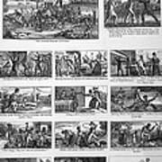 Illustrations Of The Antislavery Print by Everett
