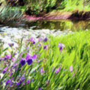 Iris And Water Print by Linde Townsend
