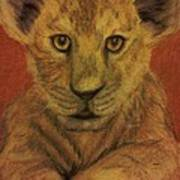 Lion Cub Print by Christy Saunders Church