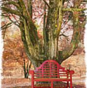 Little Red Bench Print by Debra and Dave Vanderlaan