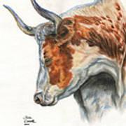 Longhorn Print by Jana Goode