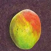Mango On Plum Print by Steve Asbell