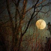 Moonrise Print by Jai Johnson