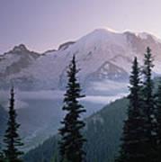 Mt Rainier As Seen At Sunrise Mt Print by Tim Fitzharris