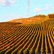 Napa Valley Vineyard . Portrait Cut Print by Wingsdomain Art and Photography