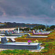 Narooma Cemetery Print by Joanne Kocwin