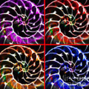 Nautilus Shell Ying And Yang - Electric - V1 - Four Squares Print by Wingsdomain Art and Photography