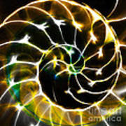 Nautilus Shell Ying And Yang - Electric - V1 - Gold Print by Wingsdomain Art and Photography