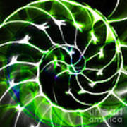 Nautilus Shell Ying And Yang - Electric - V1 - Green Print by Wingsdomain Art and Photography