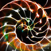 Nautilus Shell Ying And Yang - Electric - V1 - Orange Print by Wingsdomain Art and Photography