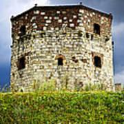 Nebojsa Tower In Belgrade Print by Elena Elisseeva