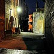 No Alley Cats Tonight Print by Jan Amiss Photography