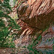 Oak Creek Canyon Walls Print by Dave Dilli