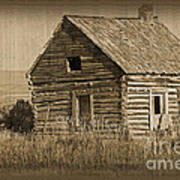 Old Hunting Cabin - Wyoming Print by Donna Greene