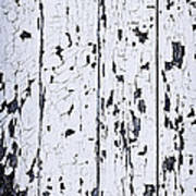 Old Painted Wood Abstract Print by Elena Elisseeva