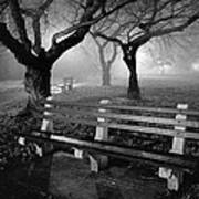 Park Benches Print by Gary Heller