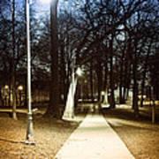 Park Path At Night Print by Elena Elisseeva