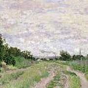 Path Through The Vines At Argenteuil Print by Claude Monet