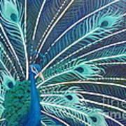 Peacock Print by Estephy Sabin Figueroa