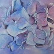 Petals Print by Patsy Sharpe