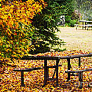 Picnic Table With Autumn Leaves Print by Elena Elisseeva