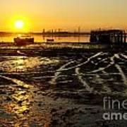 Pier At Sunset Print by Carlos Caetano
