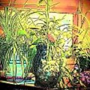 Plants Print by YoMamaBird Rhonda