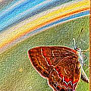 Playroom Butterfly Print by Bill Tiepelman