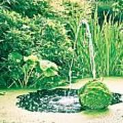 Pond Print by Tom Gowanlock