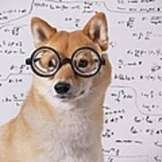 Professor Dog Print by Eric Jung