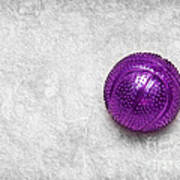 Purple Ball Cat Toy Print by Andee Design