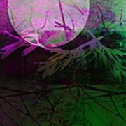 Purple Moon Print by Ann Powell