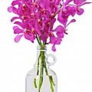 Purple Orchid In Bottle Print by Atiketta Sangasaeng