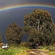 Rainbow Print by Photostock-israel
