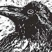 Raven Print by Julia Forsyth