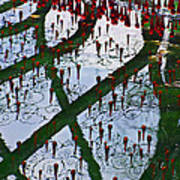 Red Crystal Refletcion Print by Garry Gay