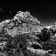 Red Rock Canyon At Spring Mountain Print by David Patterson