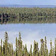 Reflection In Willow Lake Near Copper Print by Rich Reid