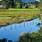 Rural Landscape After Rain Print by Kaye Menner