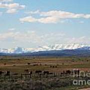 Rural Wyoming - On The Way To Jackson Hole Print by Susanne Van Hulst