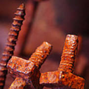 Rusty Screws Print by Carlos Caetano