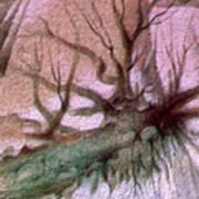 Sagada Hanging Roots 1982 Print by Glenn Bautista