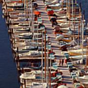 Sailboats At Moorage Print by Harald Sund