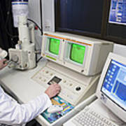 Scanning Electron Microscope Print by Paul Rapson