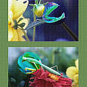 Science Class Diptych 2 - Praying Mantis Print by Steve Ohlsen