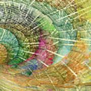 Season Of The Shell Print by Betsy Knapp