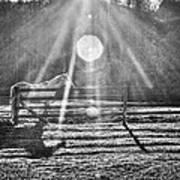 Shadow Print by Darrin Doss