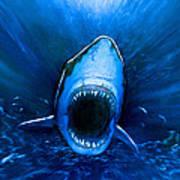 Shark Attack Print by Chris Butler